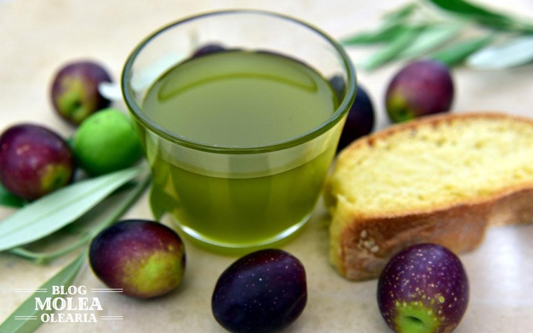 El aceite de oliva virgen extra, buque insignia de las grasas saludables