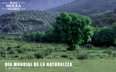 Molea Olearia celebra el Día Mundial de la Naturaleza